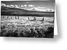 Medicine Springs Fenceline Greeting Card