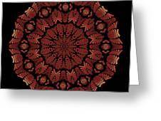 Medicine Wheel Dragonspur Fractal K12-3 Greeting Card