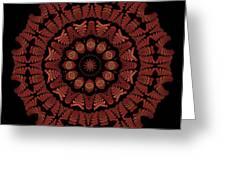Medicine Wheel Dragonspur K12-5 Greeting Card