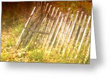 Meditation In Sunlight 2 Greeting Card