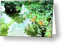 Meditation Pond Greeting Card