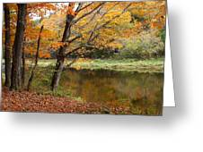 Meduxnekeag River 1 Greeting Card