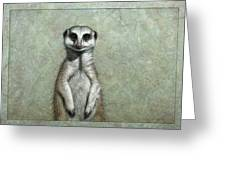 Meerkat Greeting Card by James W Johnson