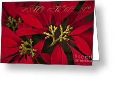 Mele Kalikimaka - Poinsettia  - Euphorbia Pulcherrima Greeting Card