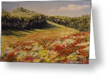 Melkow Trail  Greeting Card