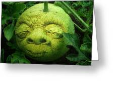 Melon Head Greeting Card by Jack Zulli