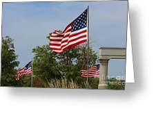 Memorial Day Flag's With Blue Sky Greeting Card by Robert D  Brozek