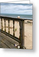 Memories Of A Cape Cod Summer Greeting Card