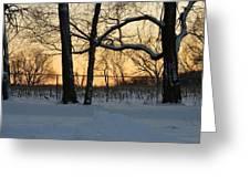 Memories Of Winter Greeting Card