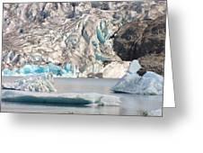 Mendenhall Glacier Detail Juneau Alaska Greeting Card