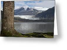 Mendenhall Glacier In Late Fall Greeting Card