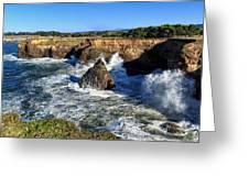 Mendocino Coast Greeting Card