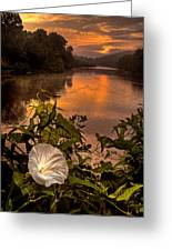 Meramec River At Chouteau Claim Greeting Card