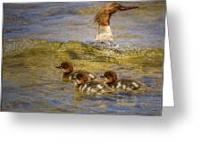 Merganser Lake Tahoe Greeting Card