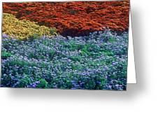 Merging Colors Greeting Card