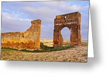 Merinid Tombs Ruins In Fes In Morocco Greeting Card