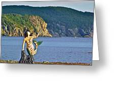 Mermaid On A Dock In Twillingate Harbour-nl Greeting Card