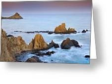 Mermail Reef Greeting Card