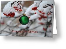 Merry Christmas 4 Greeting Card