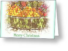Merry Christmas And A Happy New Year - Fruit And Flowers In The Snow - Holiday And Christmas Card Greeting Card
