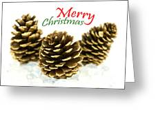 Merry Christmas Greeting Card by Blink Images