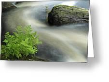Mersey River Nova Scotia Canada Greeting Card