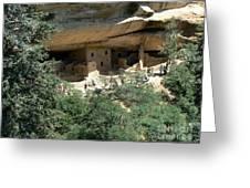 Mesa Verde Cliff Dwellings  Greeting Card