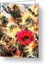 Mesh Of Cactus Needles Greeting Card