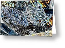 Meshed Greeting Card
