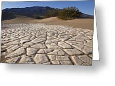 Mesquite Dune Mosaic Greeting Card