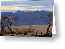 Mesquite Flat Sand Dunes Stovepipe Wells Death Valley Greeting Card
