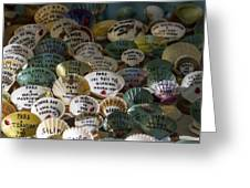 Messages On Shells Greeting Card