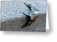 Metal Leaf Greeting Card