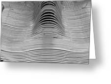 Metal Strips In Balck And White Greeting Card