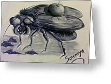 Metamorphosis Greeting Card by Soumya Bouchachi