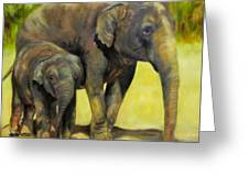Thirsty, Methai And Baylor, Elephants  Greeting Card