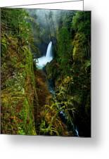 Metlako Falls Greeting Card