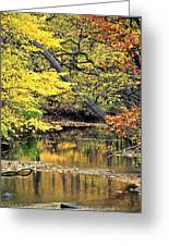 Metropark Picnic Greeting Card
