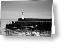 Mevagissey Lighthouse Greeting Card