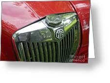 Mg Magnette Greeting Card