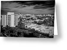 Miami Beach - 0153bw Greeting Card