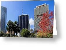 Miami Cityscape   Greeting Card
