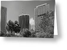 Miami Cityscape  Bw Greeting Card