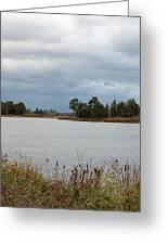 Michigan Wetland Greeting Card