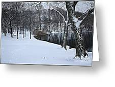 Mid-winter Storm Greeting Card