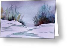 Midday Winter In Maine Greeting Card