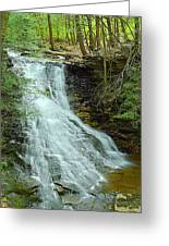 Middle Branch Falls Upper Tier #1 Greeting Card