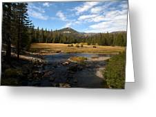 Middle Fork Of The San Joaquin River Greeting Card