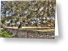Middleton Brick Wall Greeting Card