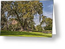 Historic Middleton Place  Greeting Card